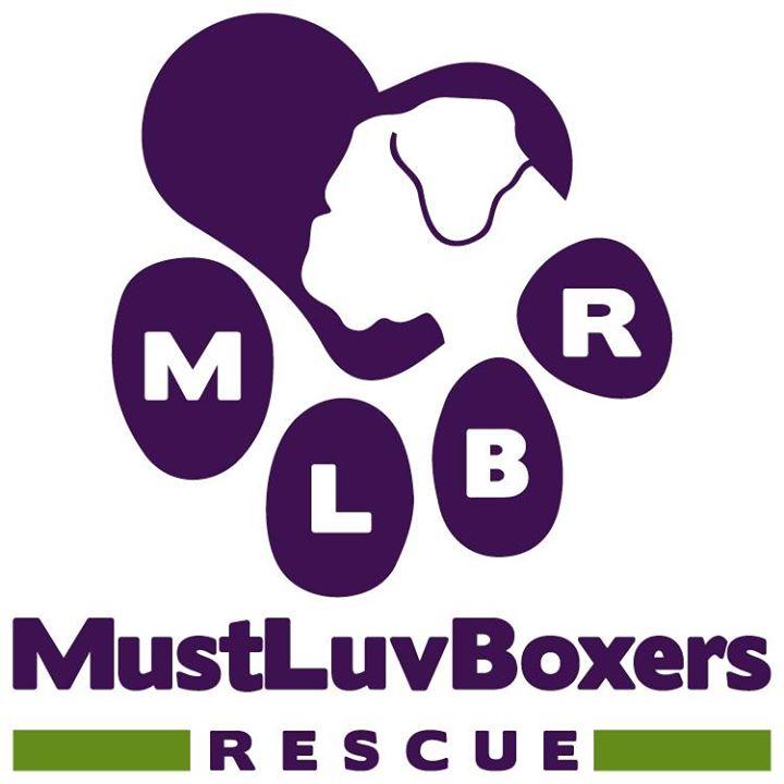 MLBR Logo