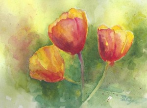Tulips sm 300x220