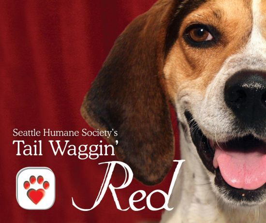 Wine Tail Waggin Red 2011 FINAL2 863 550 500 80
