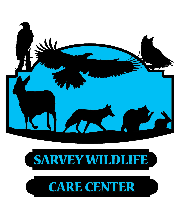 Sarvey logo