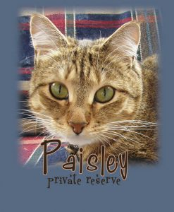 Paisley Private Reserve